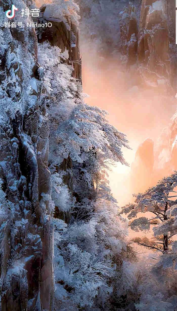 一组美得让人窒息的雾凇雪景1