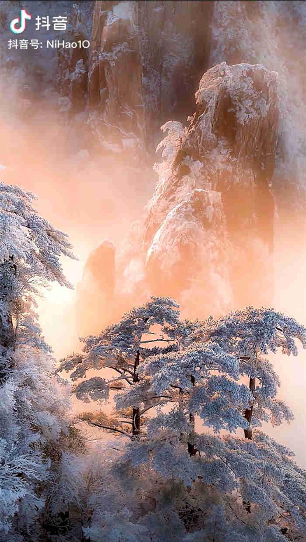 一组美得让人窒息的雾凇雪景3