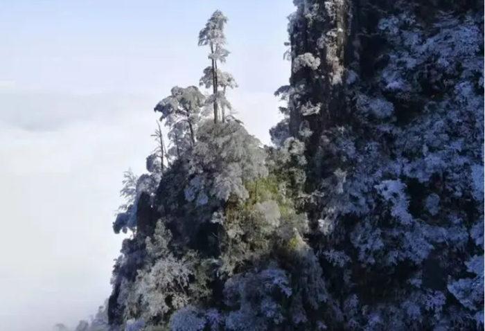 五指峰上美丽的雾凇雪景