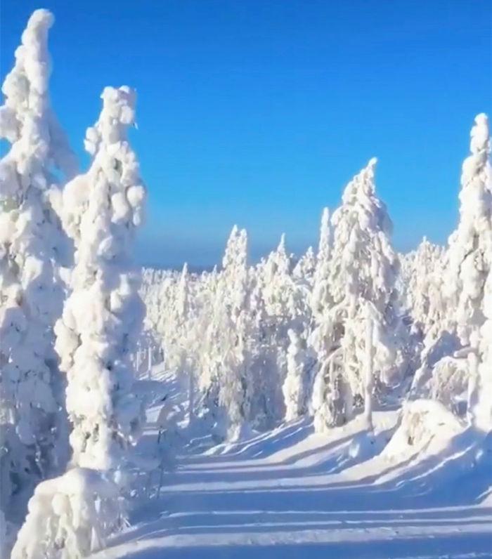 芬兰普拉兰的雾凇雪景 3宛如梦幻的冬日乐园