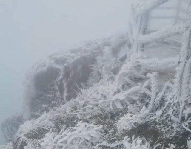 金子山迎来2021年广东的第一场雪的雾凇美景
