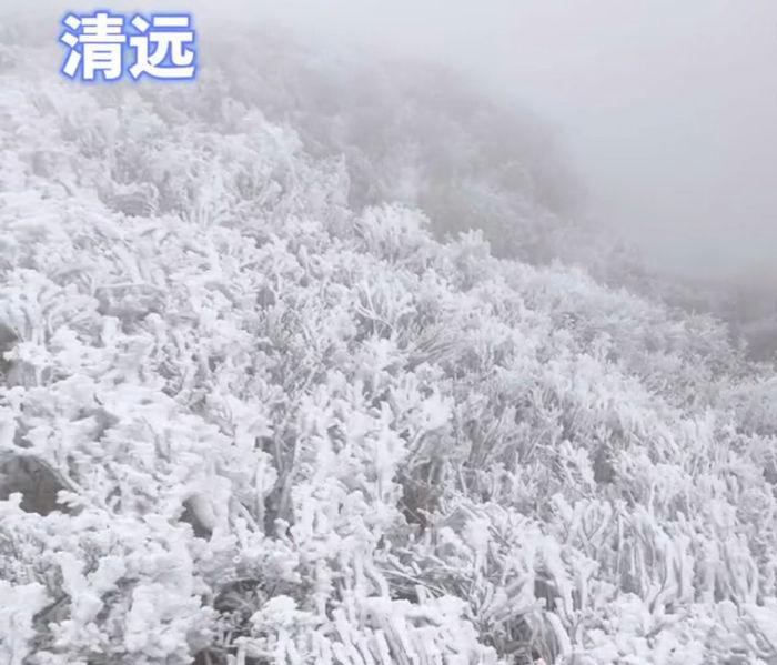 广东清远的雾凇雪景