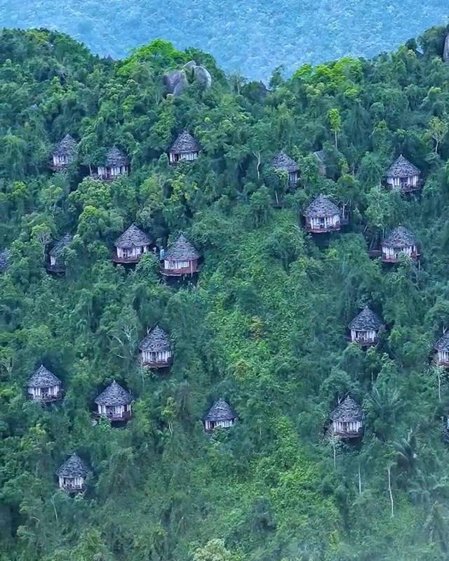 山中的楼阁,人间的天堂--三亚亚龙湾鸟巢度假村别墅群3