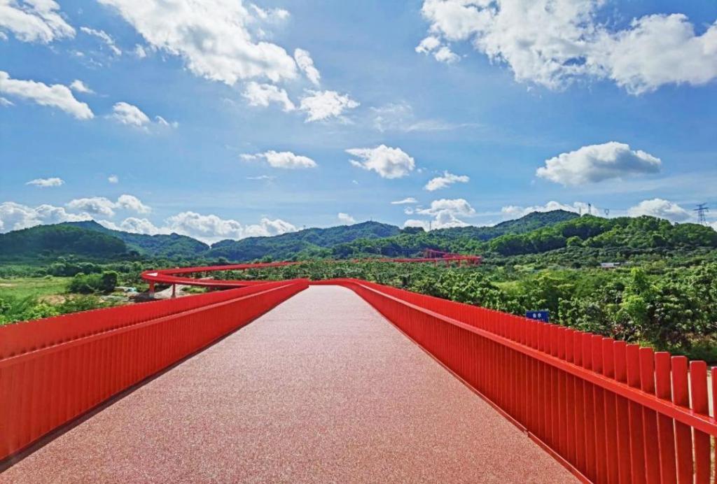 五一游深圳光明红桥森公园