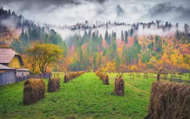 秋天旅游摄影技巧,让你的旅途在朋友圈中变得魅力四射
