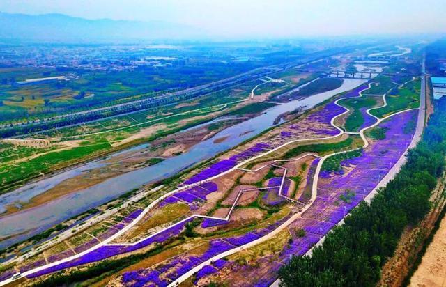带你去看山西汾河生态治理后的美景1