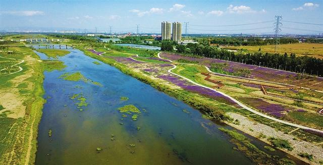 带你去看山西汾河生态治理后的美景3