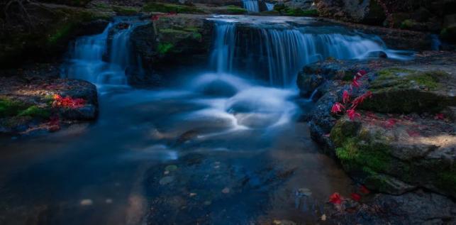 6、露水河长白山狩猎度假区